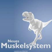 neues-muskelsystem-header