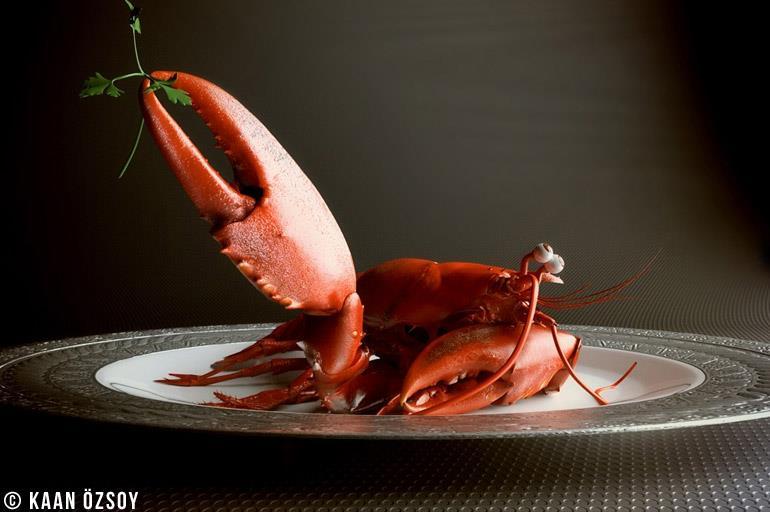 3d-cinema4d-bodypaint3d-vray-kaan-oezsoy-proud-lobster