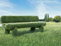 Grass bench - Brett Simms