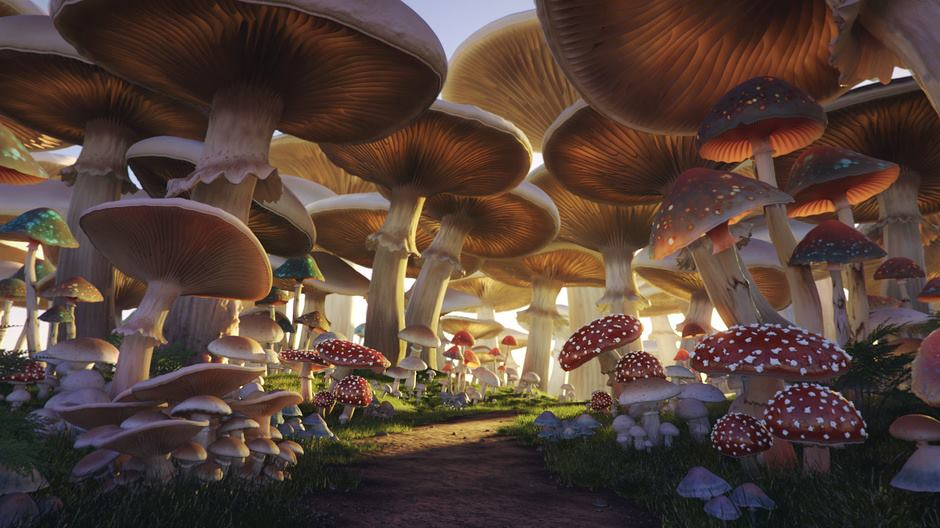 3d-maya-mental-ray-after-effects-mushroom-forest-andrei-serghiuta